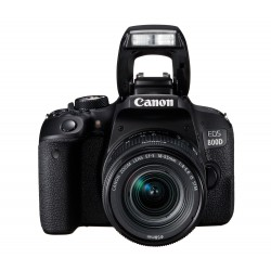 Зеркальный фотоаппарат Canon EOS 800D Kit EF-S 18-55mm IS STM